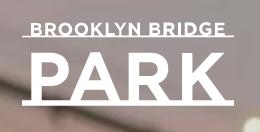 Brooklyn Beneath the Bridge